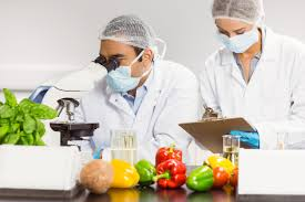 Training Food Safety Management System: ISO 22000-2005