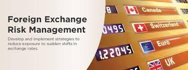 Training Foreign Exchange Risk Management