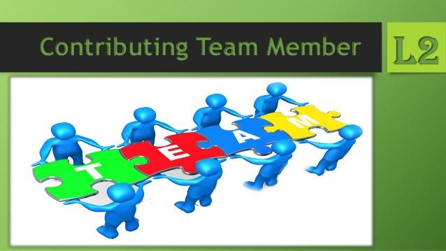 Contributing Team Member